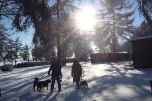 SchneeWinter4